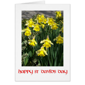 St David s Day Greeting Card