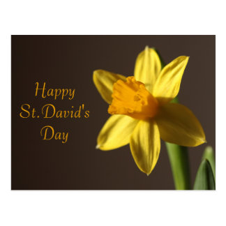 St.David's Day Postcard