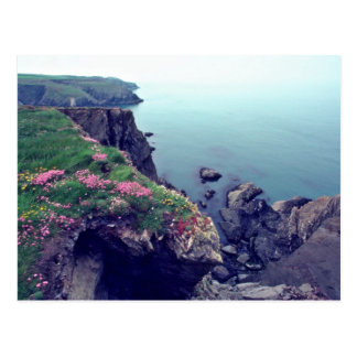 St David's Head, Westernmost Point Of Wales flower Postcard