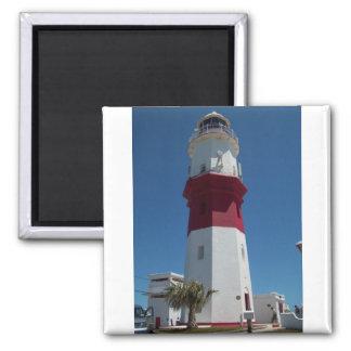 St. David's Lighthouse Magnet