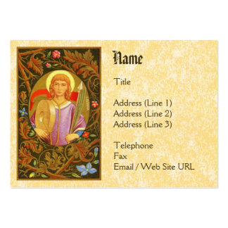 St. Florian of Lorch (PM 03) Pack Of Chubby Business Cards