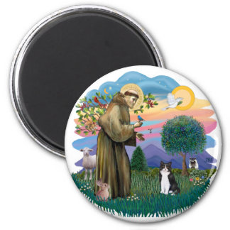 St Francis (ff) - Black and white cat 6 Cm Round Magnet