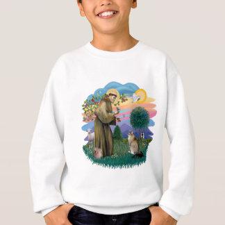 St Francis (ff) - Maine Coon cat (tabby) Sweatshirt