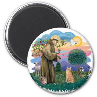 St Francis (ff) - Orange Tabby cat 6 Cm Round Magnet