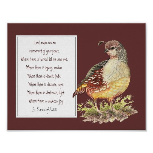 St. Francis of Assisi Prayer California Quail Bird Poster