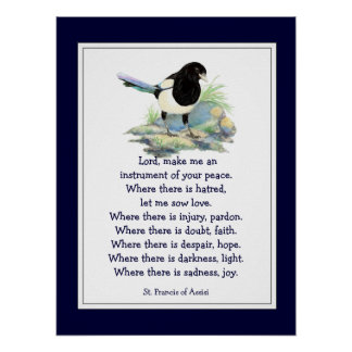 St. Francis of Assisi Prayer with Magpie Bird Poster