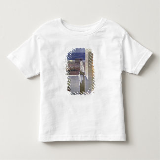 St. Genevieve Watches Over the Sleeping City Toddler T-Shirt