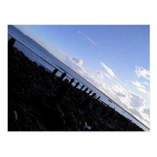 St. Ives Shore Postcard