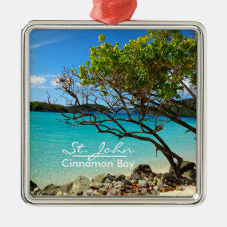 St. John Cinnamon Bay Silver Frame Ornament