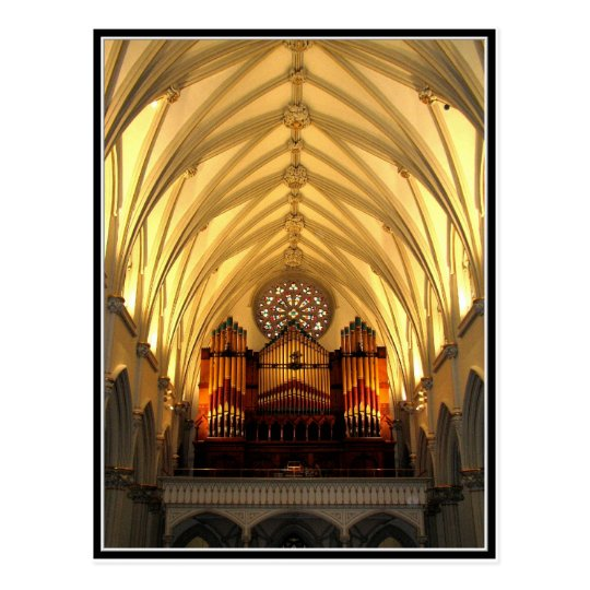 St. Joseph's Cathedral - Choir Loft / Organ Pipes Postcard