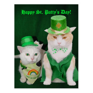 St. Patrick Kitties Postcard