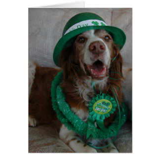 ST PATRICK S DAY BRITTANY CARD