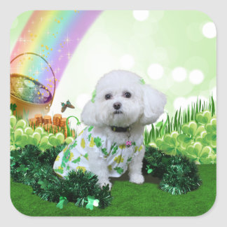 St Patrick's Day - Bichon Frise - Mia Square Sticker