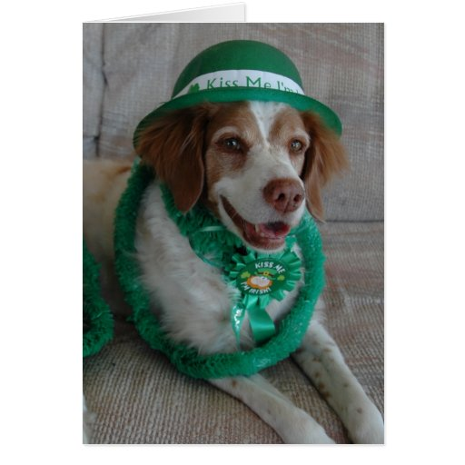 ST. PATRICKS DAY BRITTANY - Customized Greeting Card
