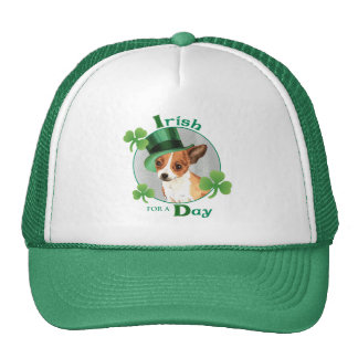 St. Patrick's Day Chihuahua Cap