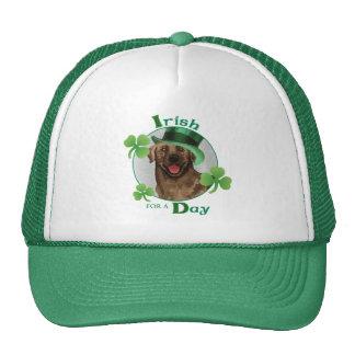 St. Patrick's Day Chocolate Lab Cap