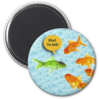 St. Patrick's Day, Goldfish Humor 6 Cm Round Magnet