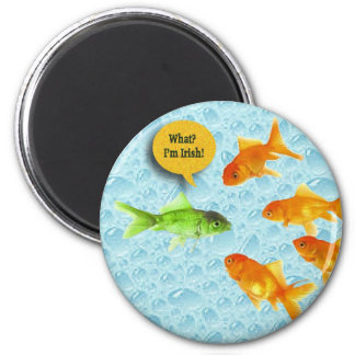 St. Patrick's Day, Goldfish Humor Refrigerator Magnets