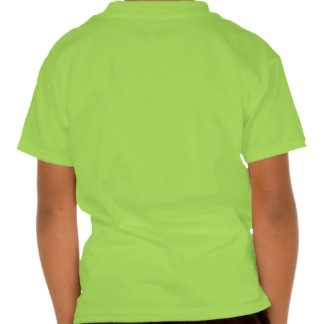 St. Patricks day Irish 2013 Shirt
