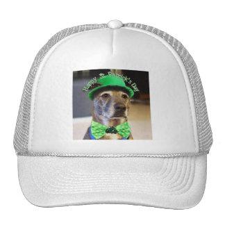 St Patrick's Day Lucky Dog Hat