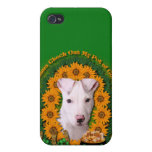 St Patricks - Pot of Gold - Pitbull - Petey iPhone 4 Cases