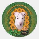 St Patricks - Pot of Gold - Pitbull - Petey Round Stickers