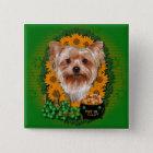 St Patricks - Pot of Gold - Yorkshire Terrier 15 Cm Square Badge
