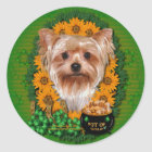 St Patricks - Pot of Gold - Yorkshire Terrier Classic Round Sticker