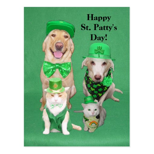 St. Patty's Day Get Together Postcard