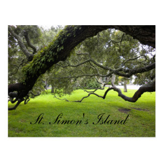 St. Simon's Island Travel Postcard