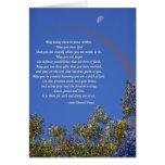St Theresa's Prayer Card