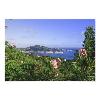 St. Thomas, US Virgin Islands. Charlotte Art Photo