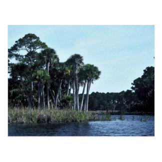 St. Vincent National Wildlife Refuge Freshwater La Postcard