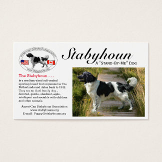 "Stabyhoun ""business"" cards"