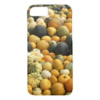 Stacked Pumpkins iPhone 7 Case