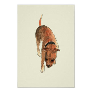 Staffordshire Bull Terrier Fun Watercolour Dog Art Poster