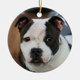 Staffordshire bull terrier ornaments