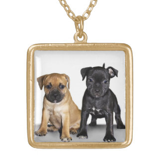 Staffordshire bull terrier puppies necklace