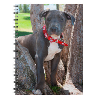 Staffordshire Bull Terrier puppy in a tree Notebook