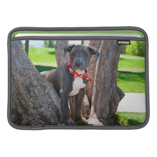 Staffordshire Bull Terrier puppy in a tree Sleeve For MacBook Air