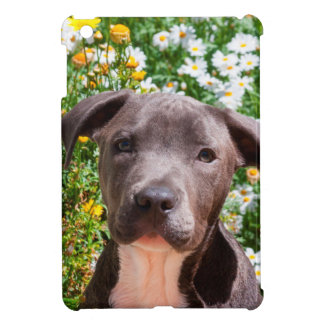 Staffordshire Bull Terrier puppy portrait Case For The iPad Mini