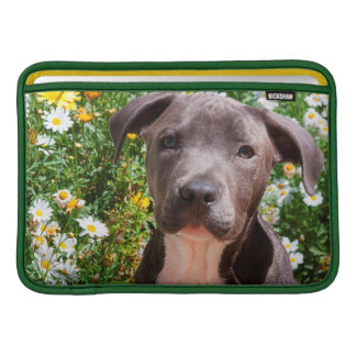 Staffordshire Bull Terrier puppy portrait Sleeve For MacBook Air