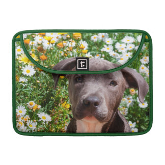 Staffordshire Bull Terrier puppy portrait Sleeve For MacBooks
