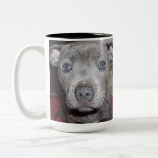 Staffordshire_Bull_Terrier,_Puppy_Two_Toned_Mug. Two-Tone Coffee Mug