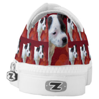 Staffordshire Bull Terrier Puppy, Zipz Sneakers. Low Tops