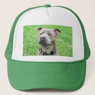 Staffordshire Bull Terrier Sitting, Trucker Hat