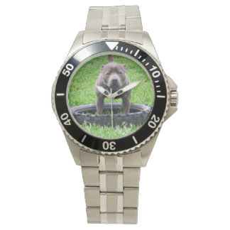 Staffordshire_Bull_Terrier_Stainless_Steel_Watch Watch