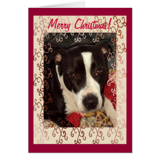 Staffordshire Terrier Merry Christmas! Greeting Card