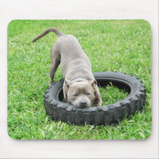 Staffordshire_Terrier_Playing_With_Tyre_Mousepad Mouse Pad