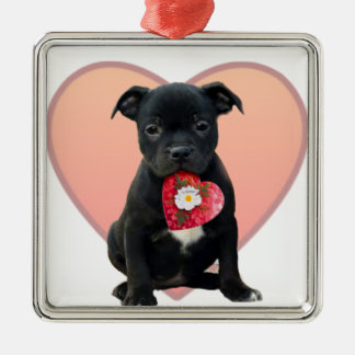 Staffordshire terrier pup valentines ornament